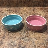 PetRageOus Designs Pet Cat Dog Bowl Set in Naperville, Illinois
