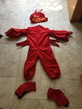 Lobster costume 3-5 years old in San Diego, California