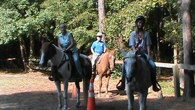 horse back lessons and boarding in Camp Lejeune, North Carolina