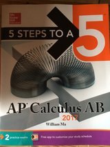 AP EXAM BOOKS, great condition, unmarked in Baumholder, GE