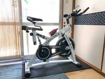 Professional Sport Cycle Training / Spin Exercise Bike in Okinawa, Japan