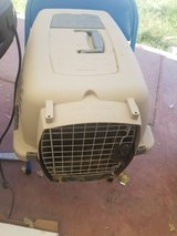 Carrier for small dogs or cats in Fort Bliss, Texas
