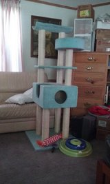 Cat Tree and Cat Toys in Warner Robins, Georgia