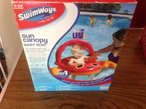 New Baby Sun Float in Chicago, Illinois
