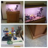 30 gallon fish tank with stand and hood in Sandwich, Illinois