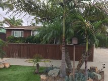 Beach Bungalow House for Rent - available now walk to Oceanside Harbor in Oceanside, California
