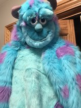 Disney sully in Westmont, Illinois