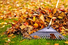 Fall Cleanups in Plainfield, Illinois