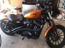 2014 Harley Davidson Iron 883 in Eglin AFB, Florida