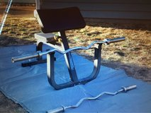 preacher curl bench and bars in Tacoma, Washington