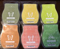 New ScentsyBars#3 in Okinawa, Japan