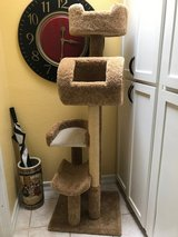 Cat Tree Play House in 29 Palms, California
