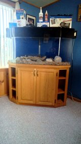60 gallon Hexagon Acrylic Aquarium and cabinet with equipment in Watertown, New York
