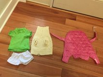 Small dog clothes in Glendale Heights, Illinois
