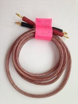 6' Original 12 Gage Monster Cable in Cary, North Carolina