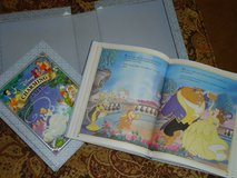 disney 2 book boxed set in Lockport, Illinois