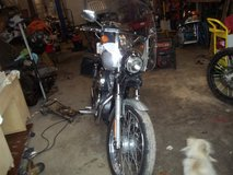 2004 HARLEY DAVIDSON SPORTSTER 883 in Cherry Point, North Carolina