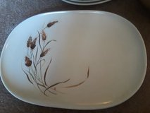 Vintage Texas Ware Dishes in Naperville, Illinois