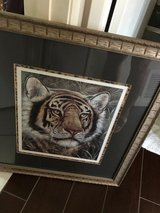 Tiger, lion framed pictures in Vista, California