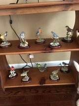 Huge collection of bird figurines in Pleasant View, Tennessee
