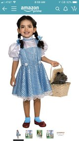 Dorothy dress, basket & shoes in Vacaville, California