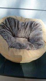 Cat Beds & Scratcher Reduced in Kingwood, Texas