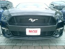 HOHENFELS IS MUSTANG CENTRAL!!! in Hohenfels, Germany