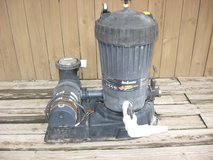 Jacuzzi DE pool filter and associated pool equipment in New Lenox, Illinois