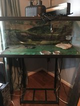 LG REPTILE TANK W/ STAND in Fort Campbell, Kentucky