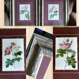 Pair Large Floral Pictures in New Lenox, Illinois