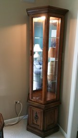 Curio Cabinet with a light inside in Shorewood, Illinois