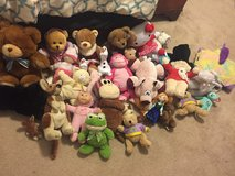 Stuffed Animals in Fort Drum, New York