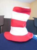 Dr Seuss Cat in the Hat hat in Fort Campbell, Kentucky