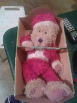 bear in a box in Macon, Georgia