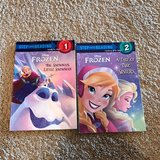 2 Frozen books in Wheaton, Illinois