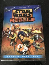 Star Wars rebels in Chicago, Illinois