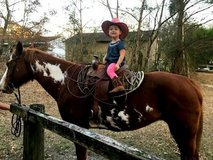 Horseback rinding lessons all ages in Wilmington, North Carolina