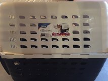 Dog carrier in Toms River, New Jersey