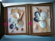 Real Shells Wood  Frames with Shell Design in Alamogordo, New Mexico