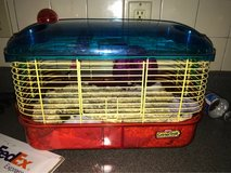 hamster and cage in Travis AFB, California