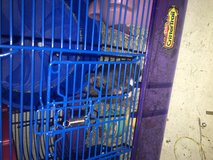 Hamster to good home in San Clemente, California