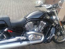 V Rod Muscle For Sale 2013 in bookoo, US