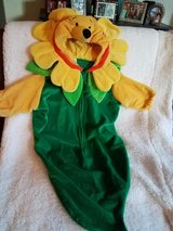 Winnie the Pooh baby costume in Vacaville, California