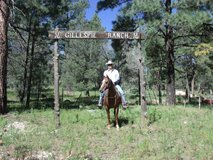 Long Term Horse Boarding in Alamogordo, New Mexico