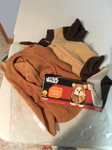 Puppy Ewok Costume in Naperville, Illinois
