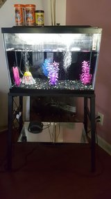 20 gallon Aquarim with Accessories in Fort Campbell, Kentucky