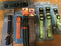Dog Collars in Batavia, Illinois