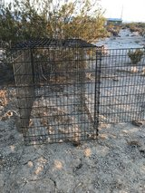 Double Gate Dog Crate for huge dog in 29 Palms, California