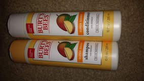 Burts bee mango shampoo and conditioner in Clarksville, Tennessee