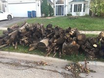 Firewood in Chicago, Illinois